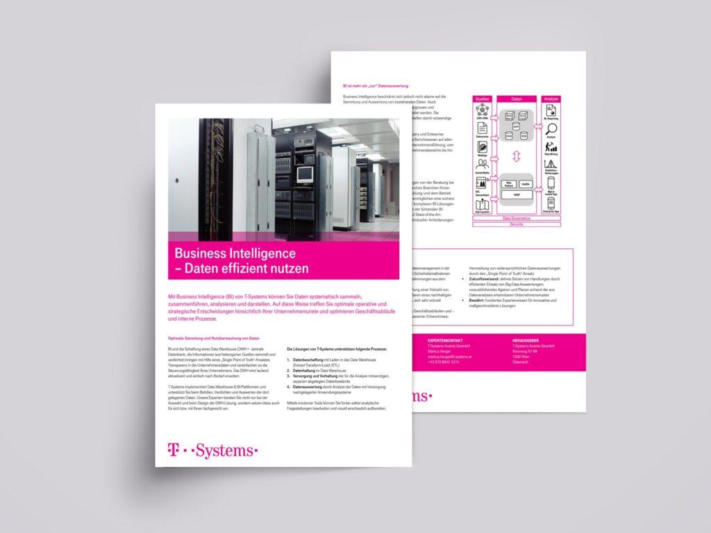 portfolio-flyers-6