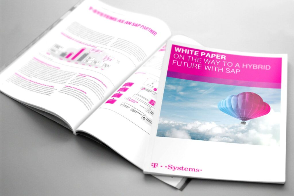 SAP White Paper 3
