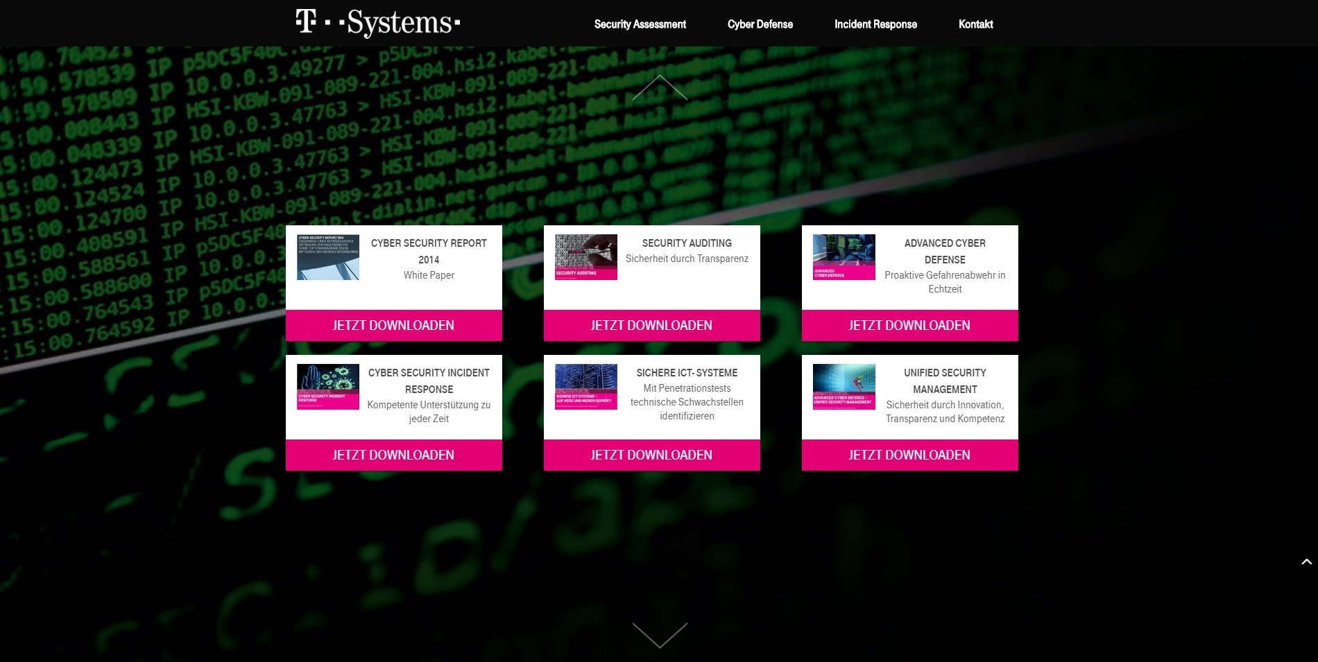 T-Systems Security Landing Page 5